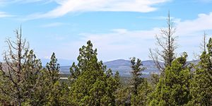 Buildable Lot in Prineville